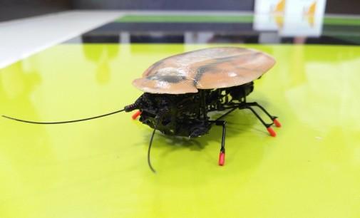 Ливанов предложил наладить производство роботов-тараканов для детей