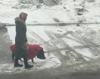 Челябинская старушка каждый день выгуливает гигантского хряка