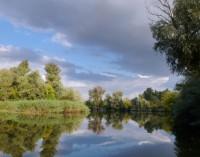 Акция «Чистый берег» объединит молодых экологов трех стран