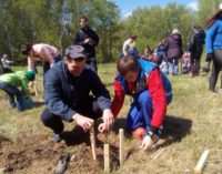 В челябинском парке имени Тищенко будет заложена первая Детская дубовая аллея