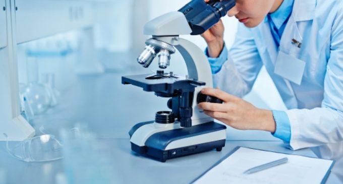 Почти 85 тысяч человек сдали тесты на коронавирус в Нижегородской области