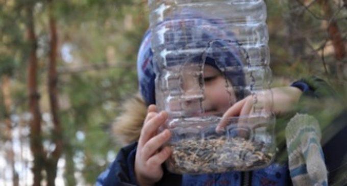 Ишимские школьники помогают лесам