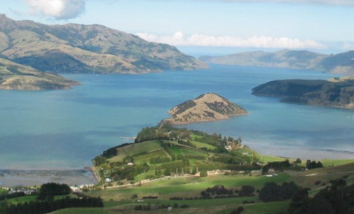 Гражданке Новой Зеландии пограничники из Казахстана пытались доказать, что такой страны не существует