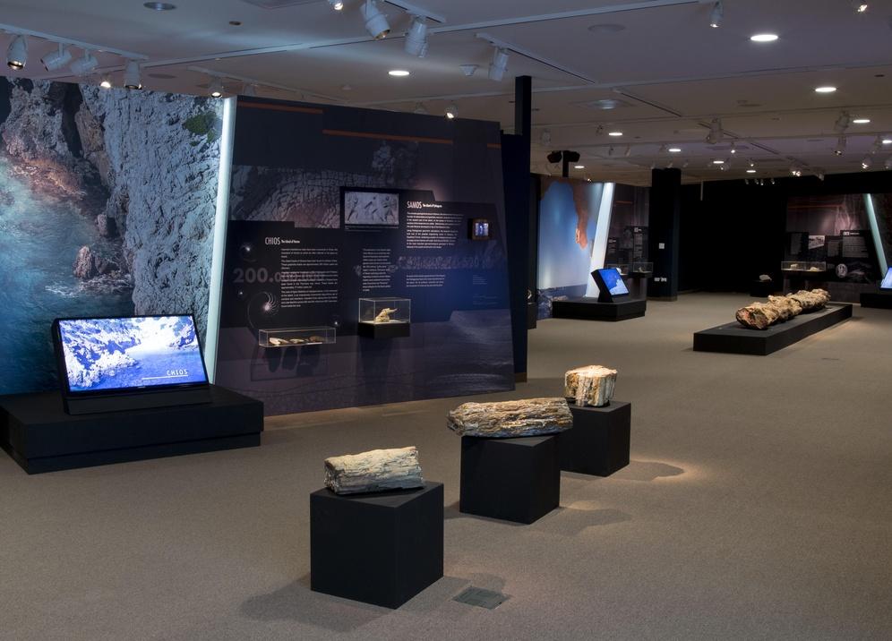 muzej-promenad-vystavki-25