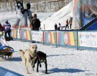Детские старты «Дюлин» на Камчатке пройдут 23 февраля