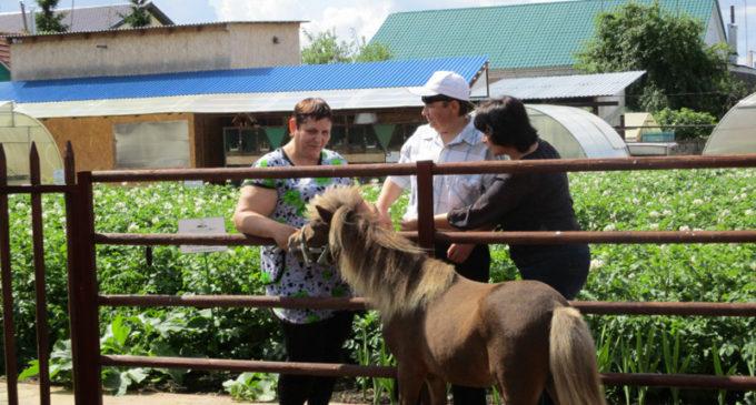Южноуральцы с ограниченными возможностями здоровья осваивают новый вид отдыха – «Сельский туризм»