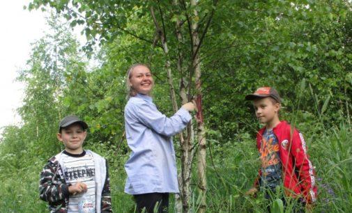 Костромские школьники создали новый туристический маршрут выходного дня