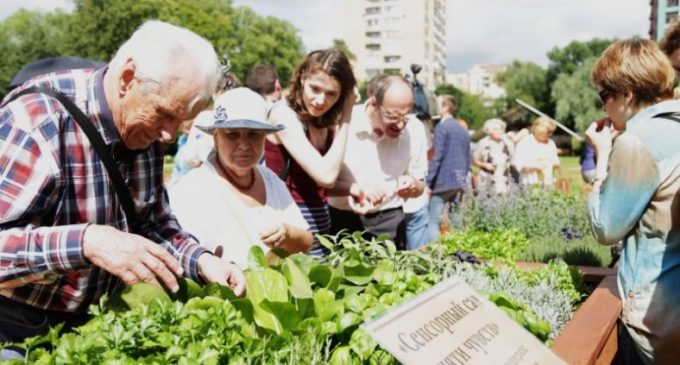 Первый в России «сенсорный сад пяти чувств» открылся в московском Аптекарском огороде
