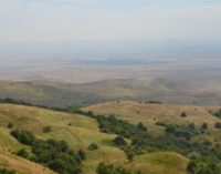 В природном заказнике «Стрижамент» открыта экологическая тропа