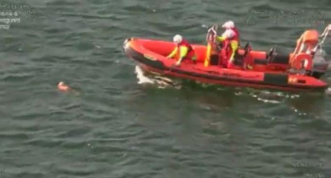 Британская береговая охрана спасла собаку