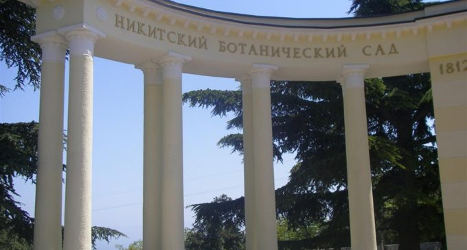 Бал хризантем Никитского ботсада в этом году пройдет одновременно с открытием парка Монтедор
