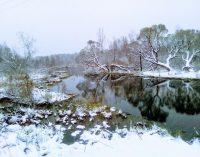 В Ленинградской области создано «Парковое агентство»