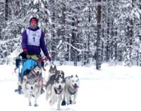 С 26 по 28 января Петрозаводск принимает VI Международные гонки на собачьих упряжках «По земле Сампо»