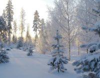 В Восточной Сибири установились 50-градусные морозы