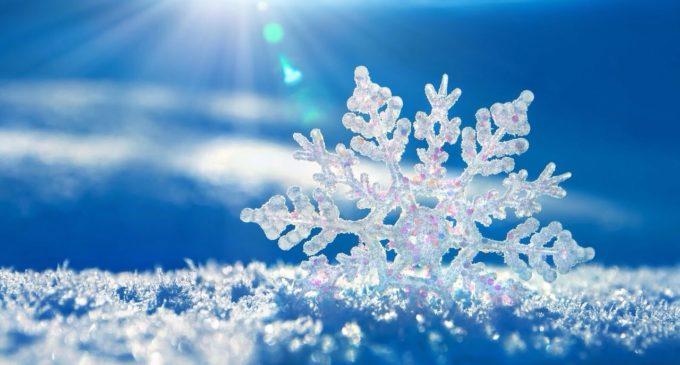 День снега сыктывкарцы встретят с хаски и «вышибалой»