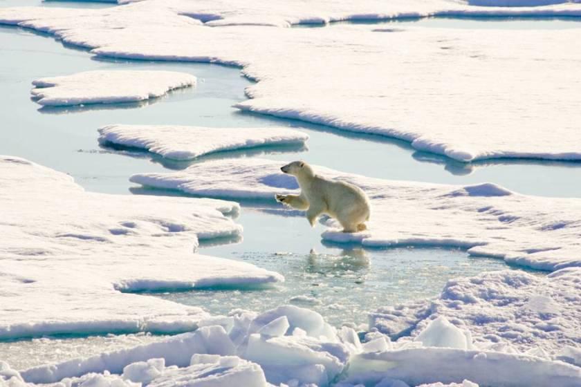 Арктика-освоение-1