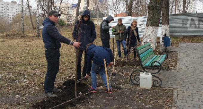 Орловские студенты восстановили исторические аллеи Тургеневского сада