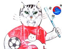 Похищен корейский кот-футболист!
