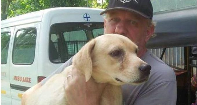 Супруги потратили £300 000 на спасение бездомных собак в Индии