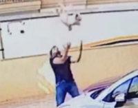 Мужчина поймал выпавшую с балкона собаку
