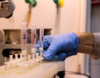 Химики МГУ разработали метод выявления поддельных соков