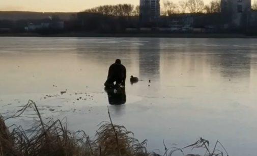 Екатеринбуржец прополз по тонкому льду Исети, чтобы освободить вмёрзшую утку
