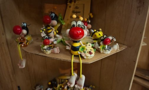 Музей Пчелы в Сандово