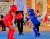 «Ярмарка спорта» пройдет во Владивостоке…