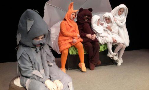 Первый открытый фестиваль малых театральных форм «Зимний калейдоскоп» стартовал в Вологде