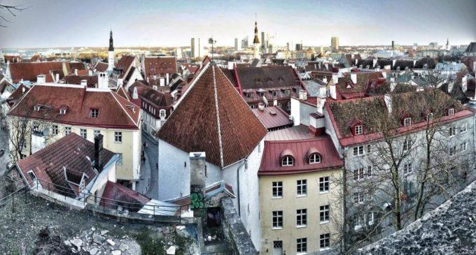 От Тихого до Атлантического: статус столицы Тотального диктанта передали из Владивостока в Таллинн…