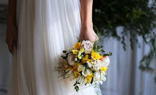 11 пар зарегистрируют брак в День святого Валентина в Приморье