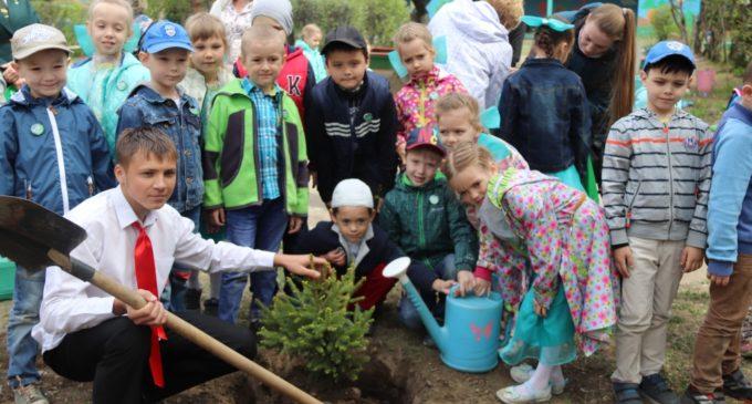 В Иркутске проходит экологическая акция «Жизнь растет с тобой»