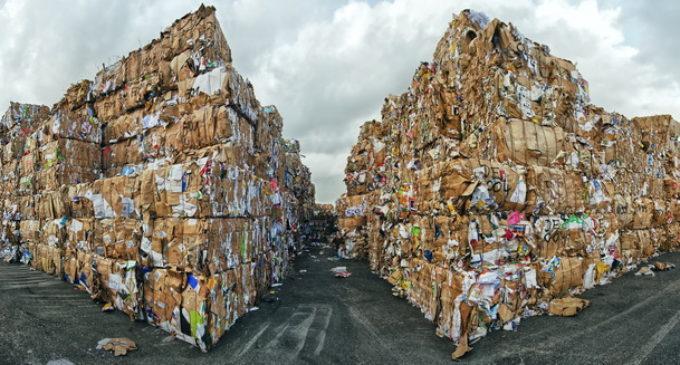 В Екатеринбурге стартовал экологический конкурс «Бумаге – вторую жизнь!»