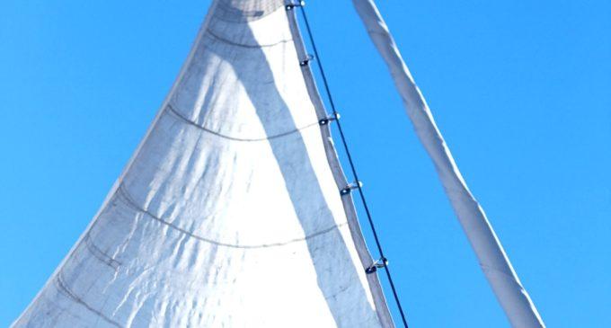 Область над вольной Невой развивает яхтенный туризм
