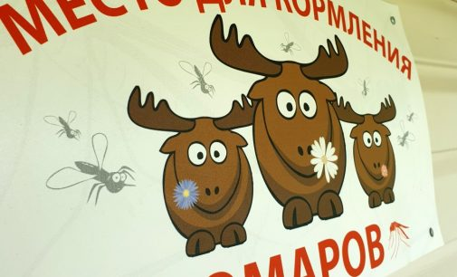 Туристы выбирают отдых в области над вольной Невой