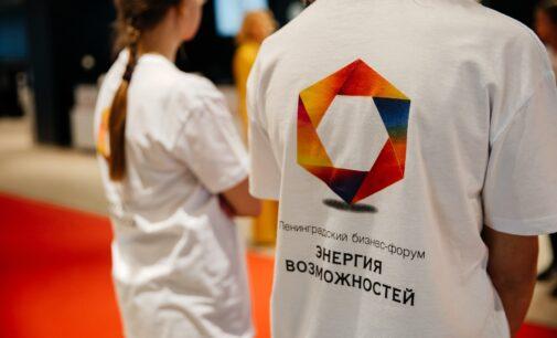 Губернатор Ленобласти сварит уху на бизнес-форуме «Энергия возможностей»