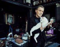 Всемирный день кошек. Как свежая тема для КОТОконкурса!